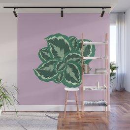 Tropical leaves of calathea Wall Mural