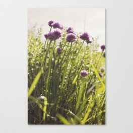 Chive -tastic!!! Canvas Print