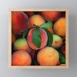 Peachy Peaches Framed Mini Art Print