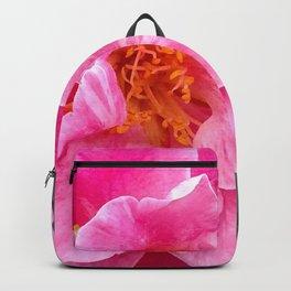Emergence Backpack