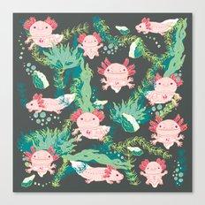 Baby Axolotl Canvas Print