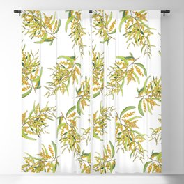 Australian Wattle Flower, Illustration Blackout Curtain