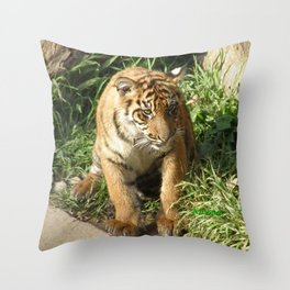 Young Tiger Throw Pillow
