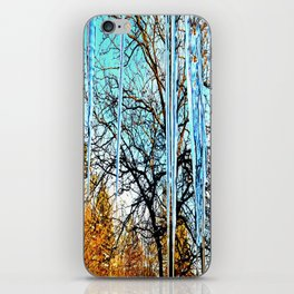 Icicles iPhone Skin