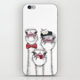 Ostrich family iPhone Skin