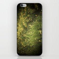 field of yellow flowers. iPhone & iPod Skin