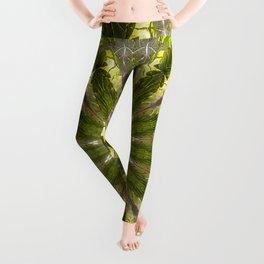 Ancient Forest Mandala (green) Leggings