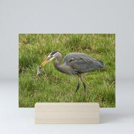 The Heron's Catch Mini Art Print