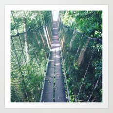 Hanging High Art Print