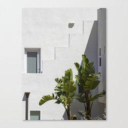 Palms of Avila Beach Canvas Print