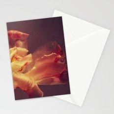 luce Stationery Cards