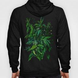 Green & Black, Floral Art Hoody