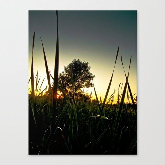 Slice of the Sky Canvas Print