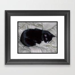 Sweet Slumber Framed Art Print