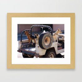 Jeep Dogs Framed Art Print