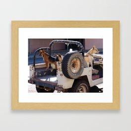 Jeep Dogs Framed Art Print