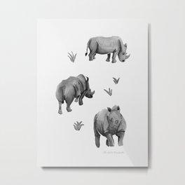 Rhino's Grazing - Black & White Metal Print