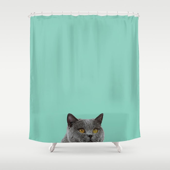 Duck Egg Blue British Short Hair Wall Decor Cat Clock Shower Curtain By Lubo