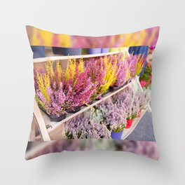 shelves with blooming heather Throw Pillow