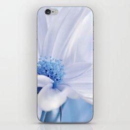 Cosmea flower 118 iPhone Skin