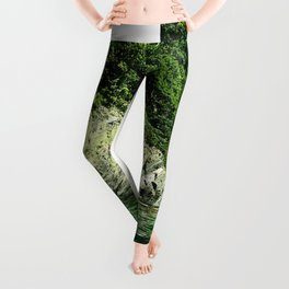 the Caribbean reef and the water gift Leggings