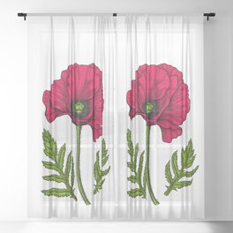 Red Poppy 3 Sheer Curtain