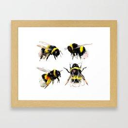Bumblebee, Bee art, bee design, bees Framed Art Print