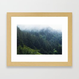 Oregon forest, foggy forest, oregon coast, green forest, nature, moody forest, moody landscape Framed Art Print