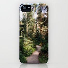 Path through the Hoh Rainforest iPhone Case