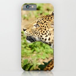 The Leopard Stare iPhone Case