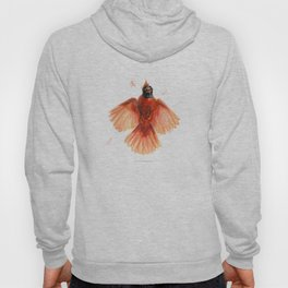 Northern Cardinal - Window Strike! Hoody
