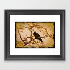 Old crow awaits Framed Art Print