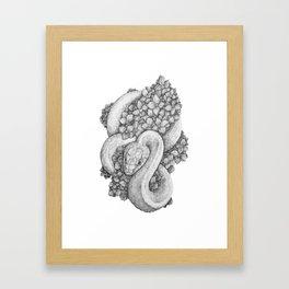 Snake and Flower Framed Art Print
