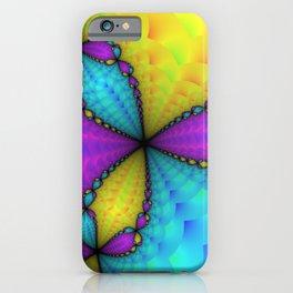 Newton Fractal iPhone Case