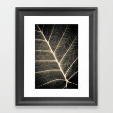Leaf Patterns Framed Art Print