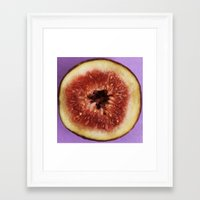 fig Framed Art Prints featuring fig by Jenny Goldring