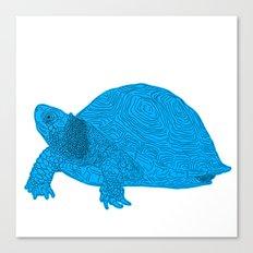 Turtle Illustration Blue Canvas Print