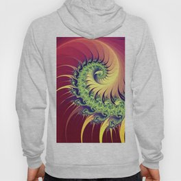 colorful fractal spirals -102- Hoody