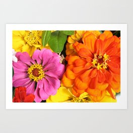 Farmer's Market Flowers Art Print