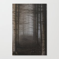 In the still forest Canvas Print