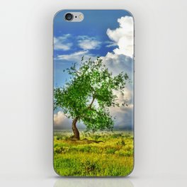 Sommertag iPhone Skin