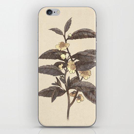 Late Bloom  iPhone & iPod Skin