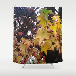 California Leaves In Fall Shower Curtain