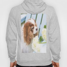 Cavalier King Charles With Hydrangeas Hoody