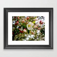 Spring Forward Framed Art Print