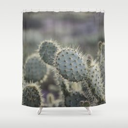 Sunset Cliffs Cactus Shower Curtain
