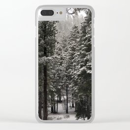 Carol Highsmith - Snow Covered Trees Clear iPhone Case