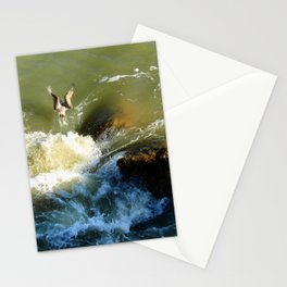 Splash 2 Stationery Cards
