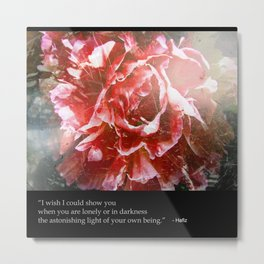 I Wish I Could Show You... Metal Print