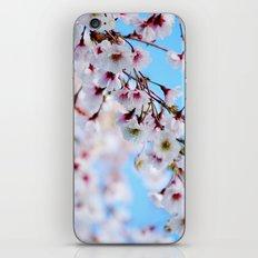 Arboretum Blossoms iPhone & iPod Skin